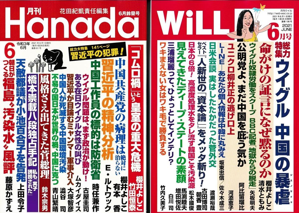 f:id:satoumamoru:20210424163510j:plain