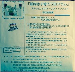 f:id:satoumi-home:20161104002111j:plain