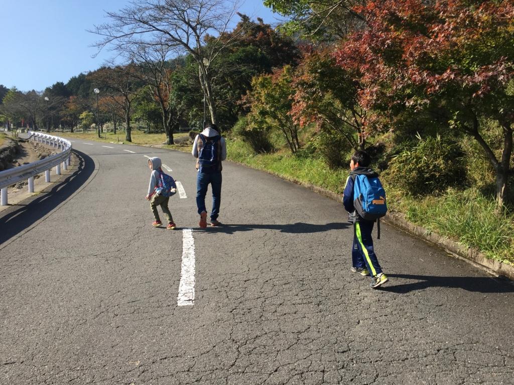 f:id:satoumi-home:20161105193330j:plain