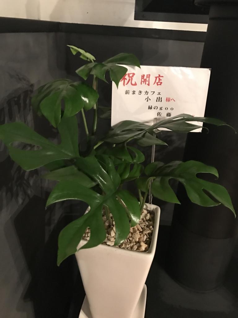 f:id:satoyama-makimaki:20170405235300j:plain