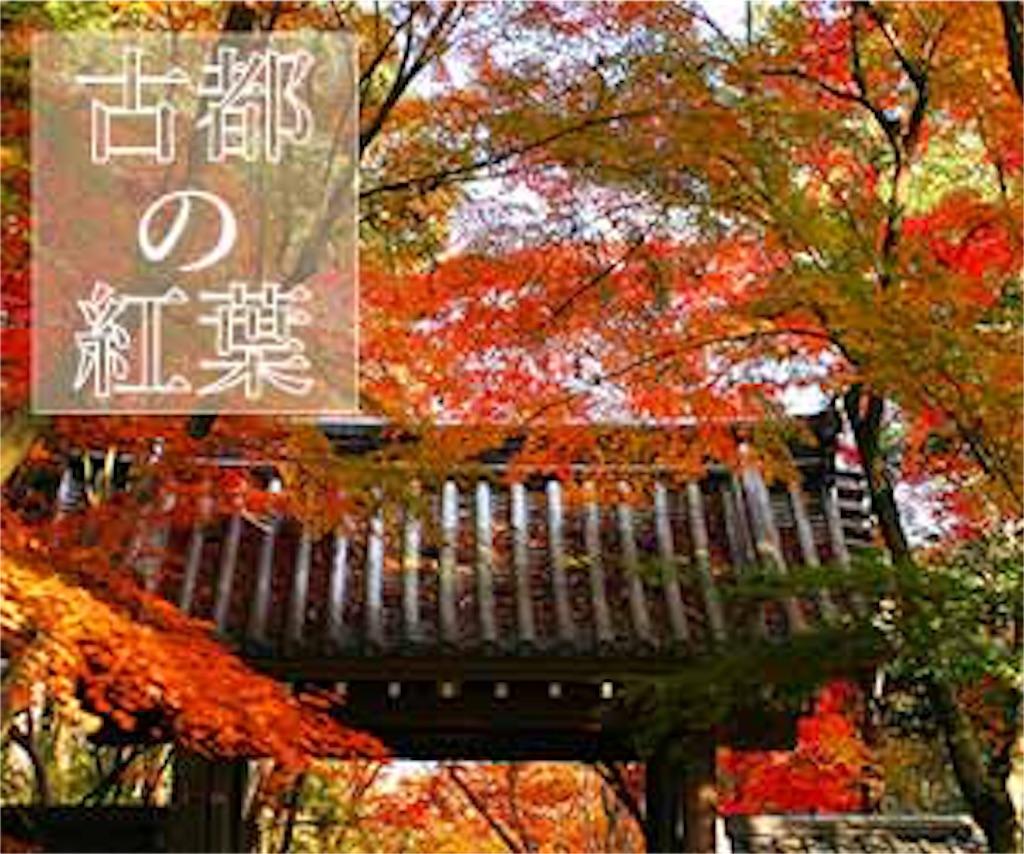 f:id:satoyama0611:20170623215254j:image