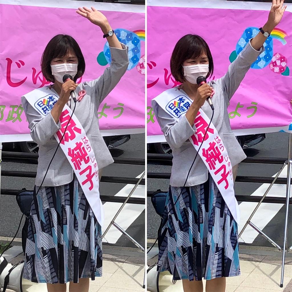 f:id:satoyama0611:20210623113956j:image