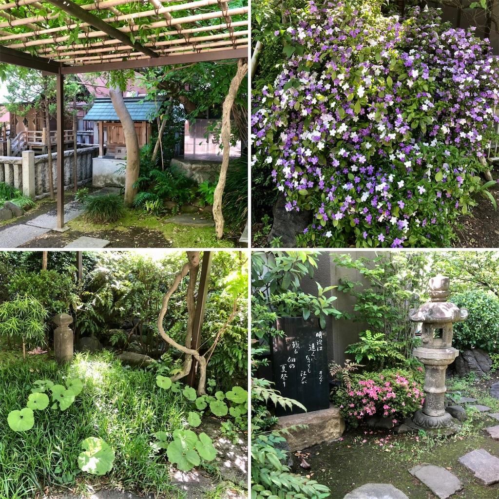 f:id:satoyama0611:20210712104410j:image