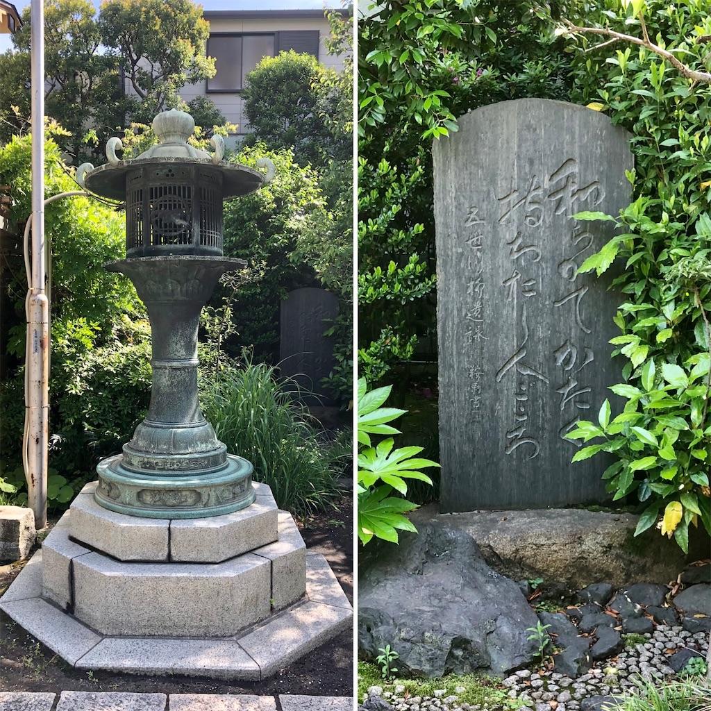 f:id:satoyama0611:20210712104436j:image