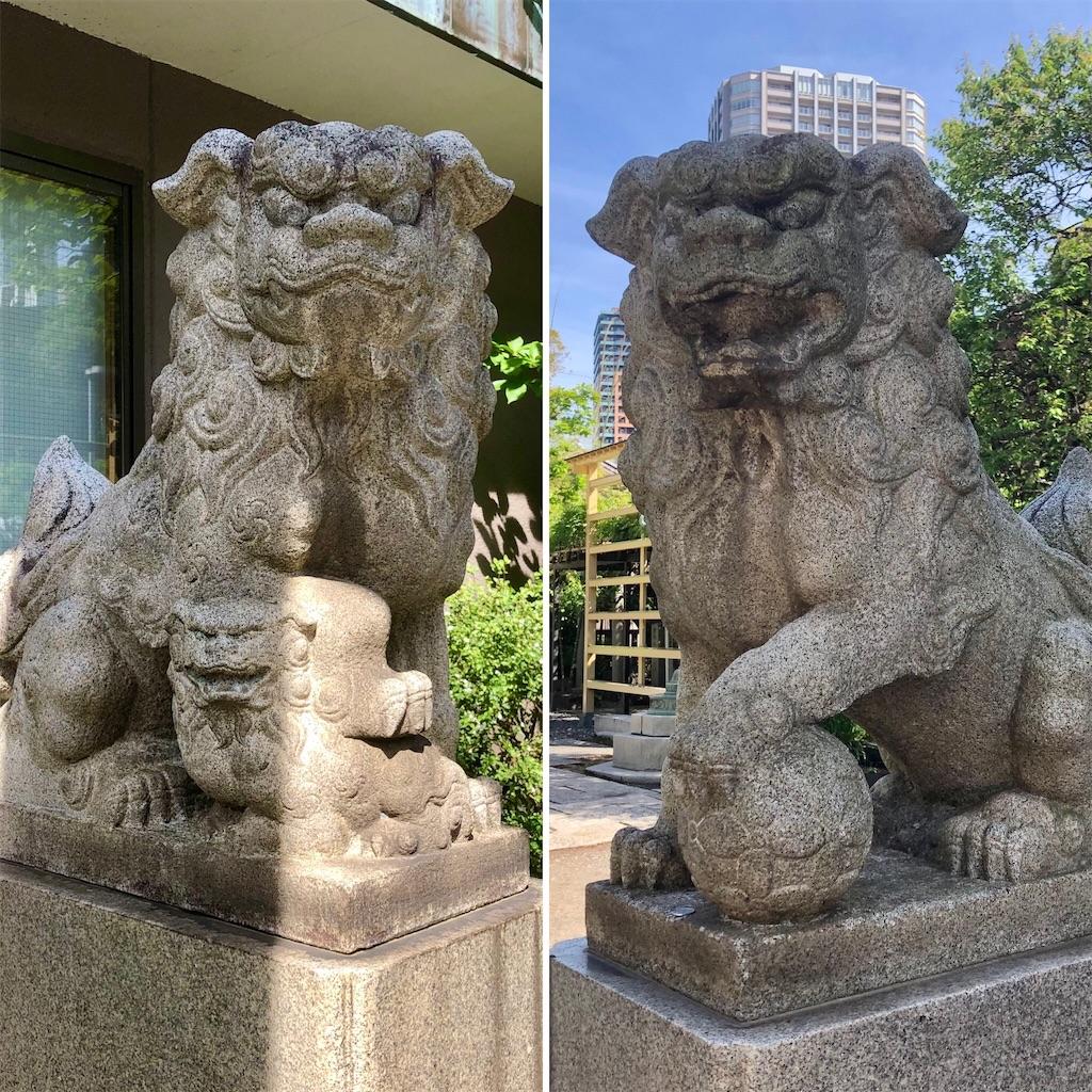 f:id:satoyama0611:20210712104441j:image