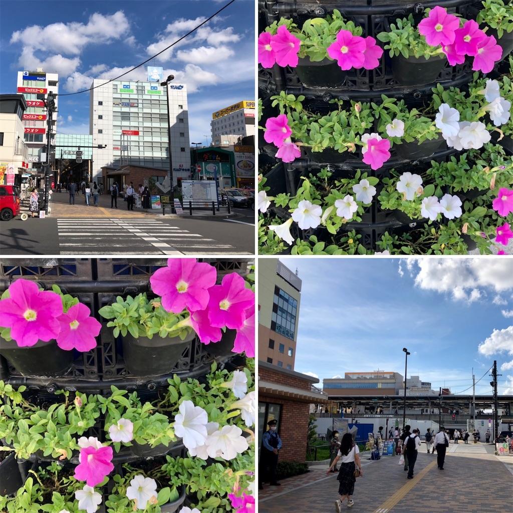 f:id:satoyama0611:20210718130428j:image