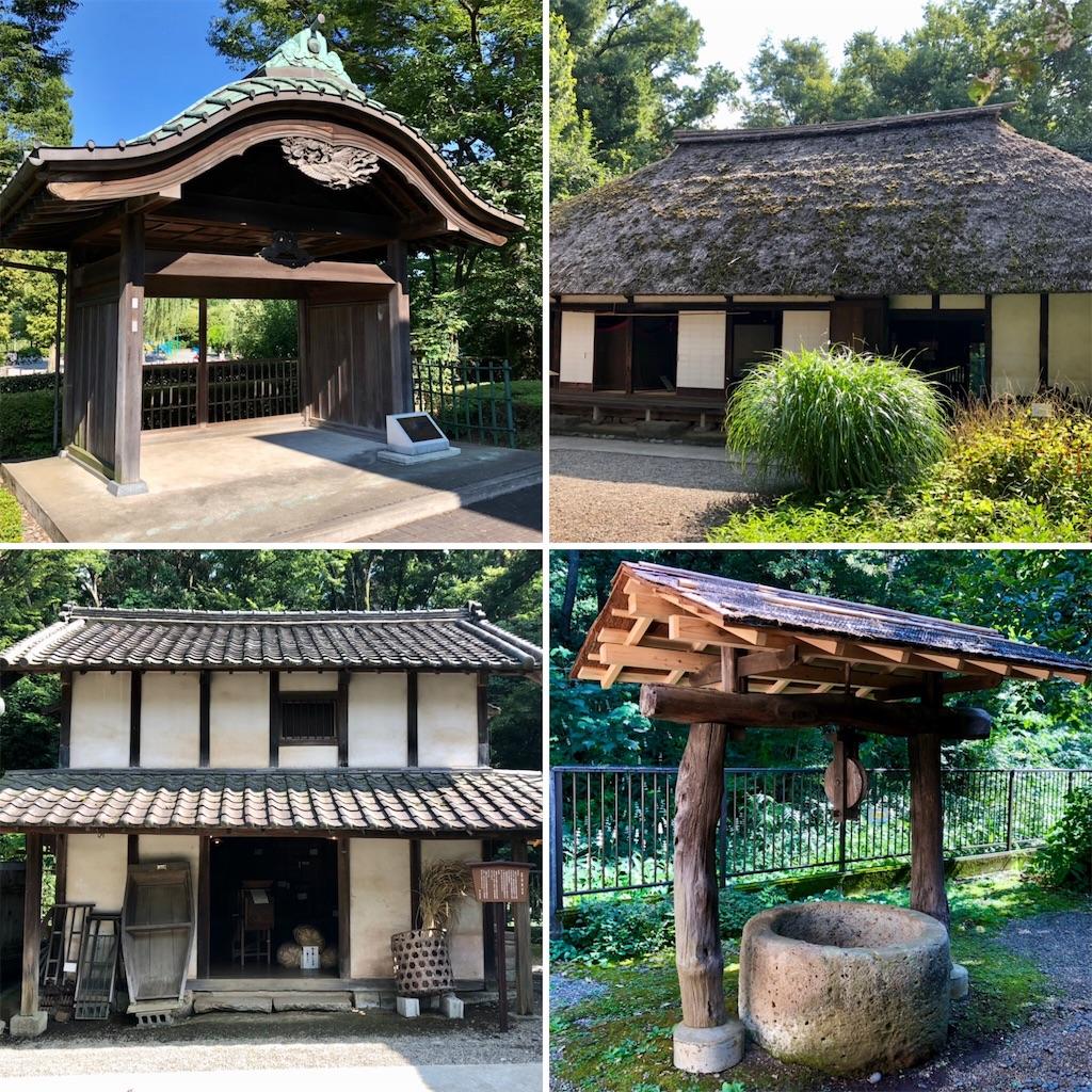 f:id:satoyama0611:20210808115311j:image