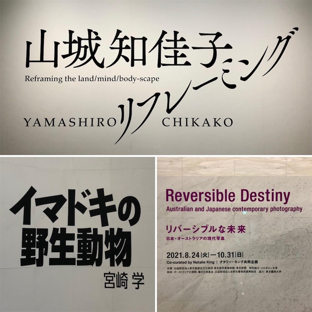 f:id:satoyama0611:20210827130825j:image