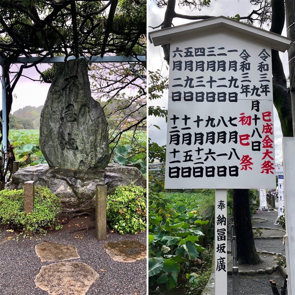 f:id:satoyama0611:20210920091155j:image