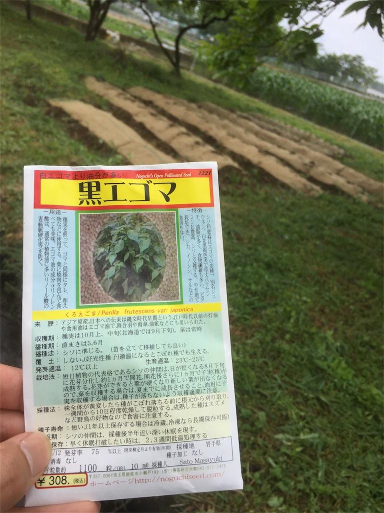 f:id:satoyamajyanaikedoasobu:20170514085048j:image