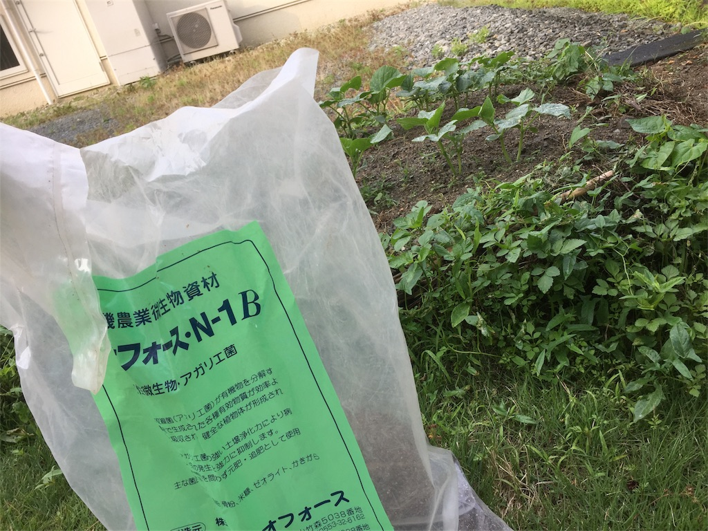 f:id:satoyamajyanaikedoasobu:20170613045941j:image