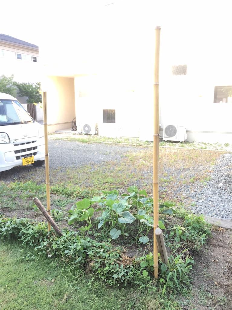 f:id:satoyamajyanaikedoasobu:20170621074143j:image