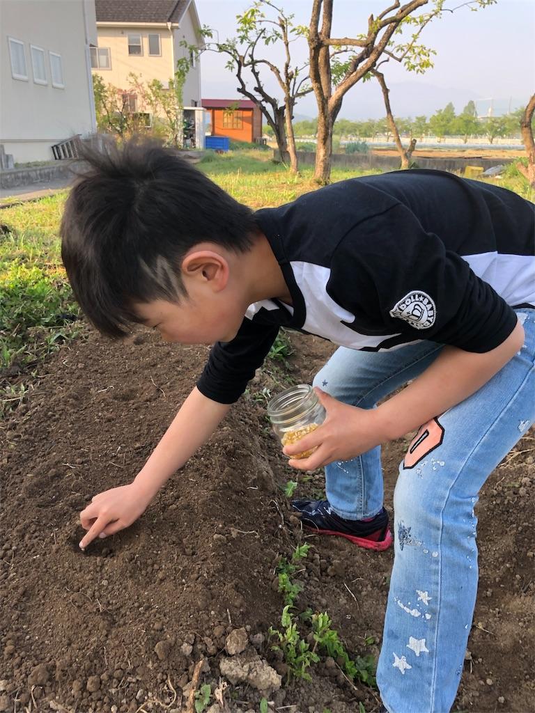 f:id:satoyamajyanaikedoasobu:20180422074552j:image