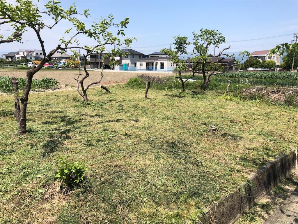 f:id:satoyamajyanaikedoasobu:20180430112558j:image