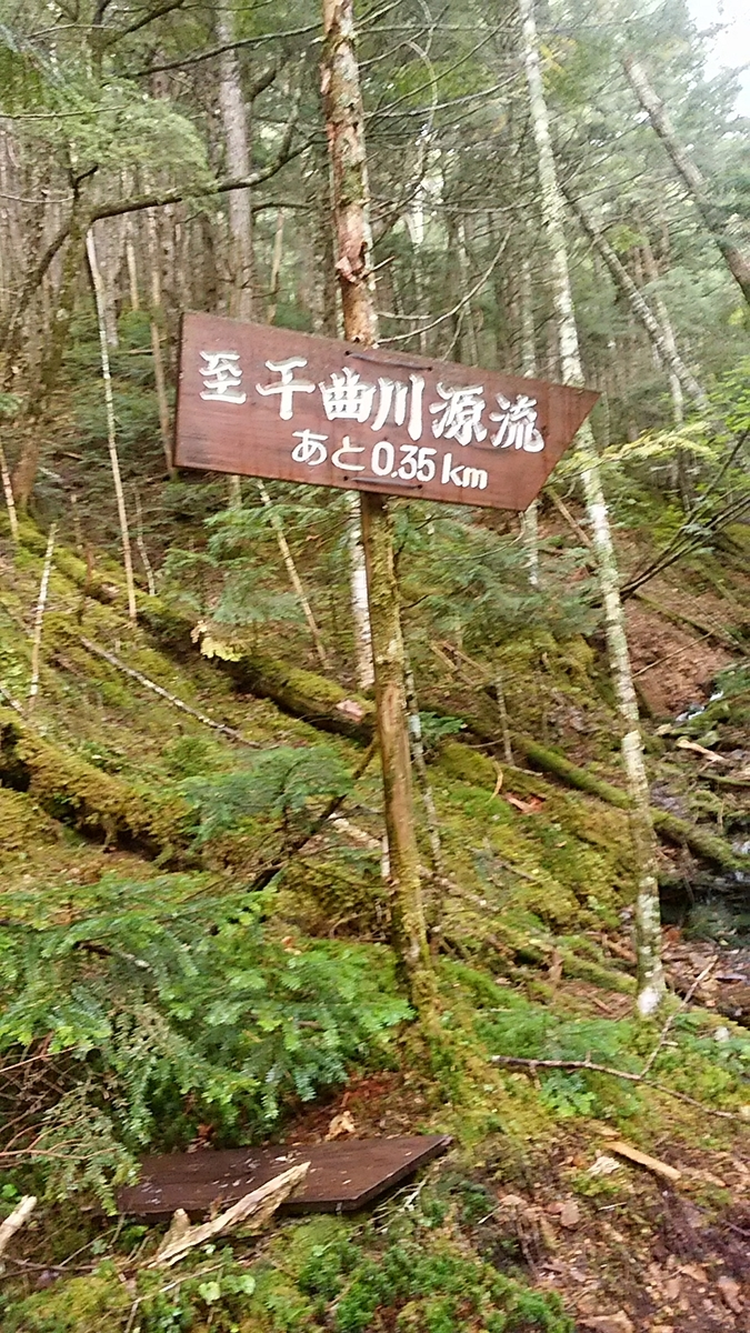 f:id:satoyamanekokun:20201004150216j:plain