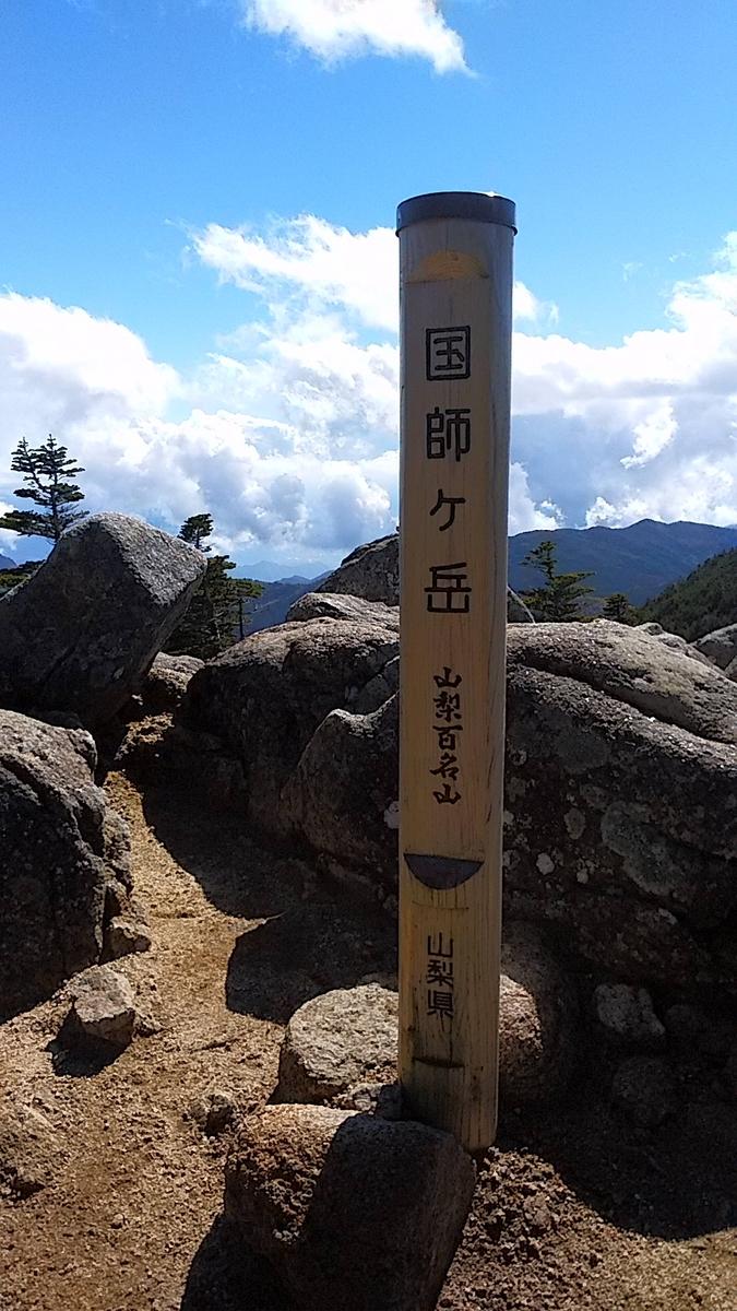 f:id:satoyamanekokun:20201107212201j:plain