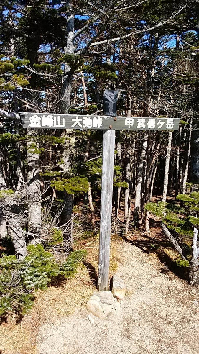 f:id:satoyamanekokun:20201107212227j:plain
