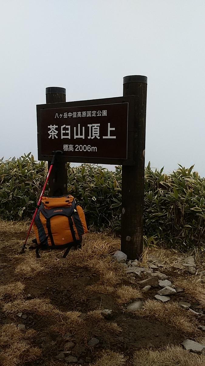 f:id:satoyamanekokun:20201205135310j:plain