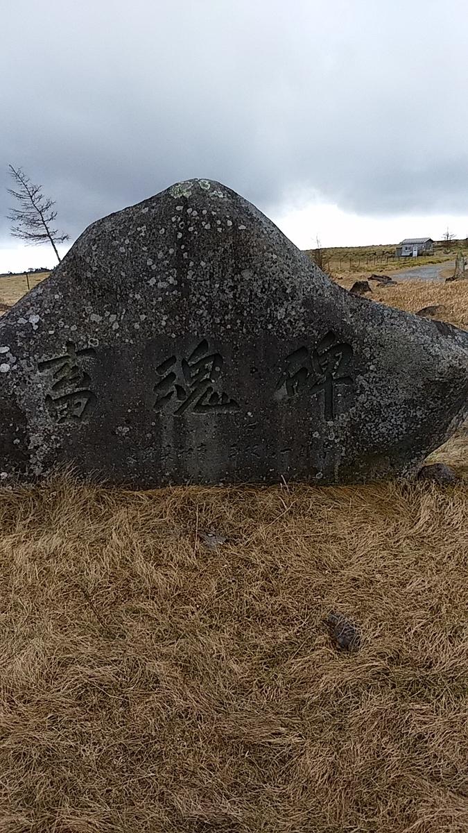f:id:satoyamanekokun:20201205180808j:plain