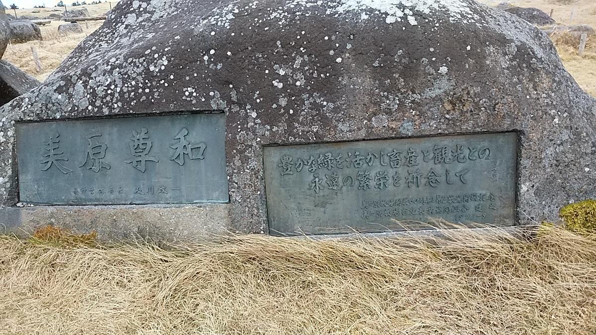 f:id:satoyamanekokun:20201205181045j:plain