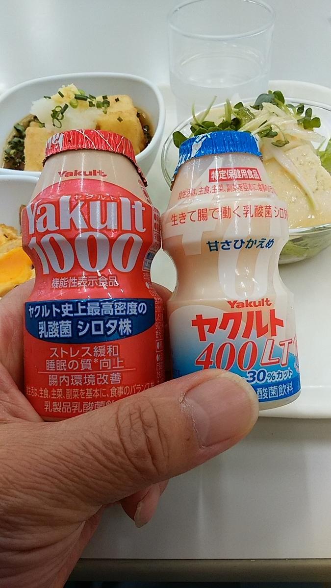 f:id:satoyamanekokun:20210123160447j:plain