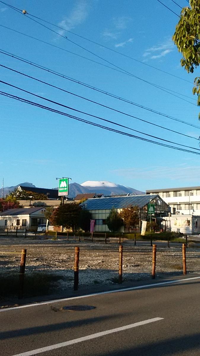 f:id:satoyamanekokun:20210216120449j:plain