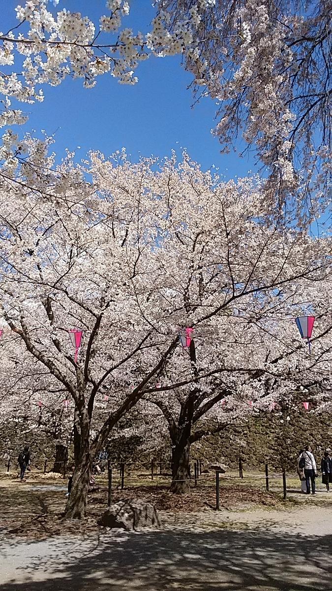 f:id:satoyamanekokun:20210418142642j:plain
