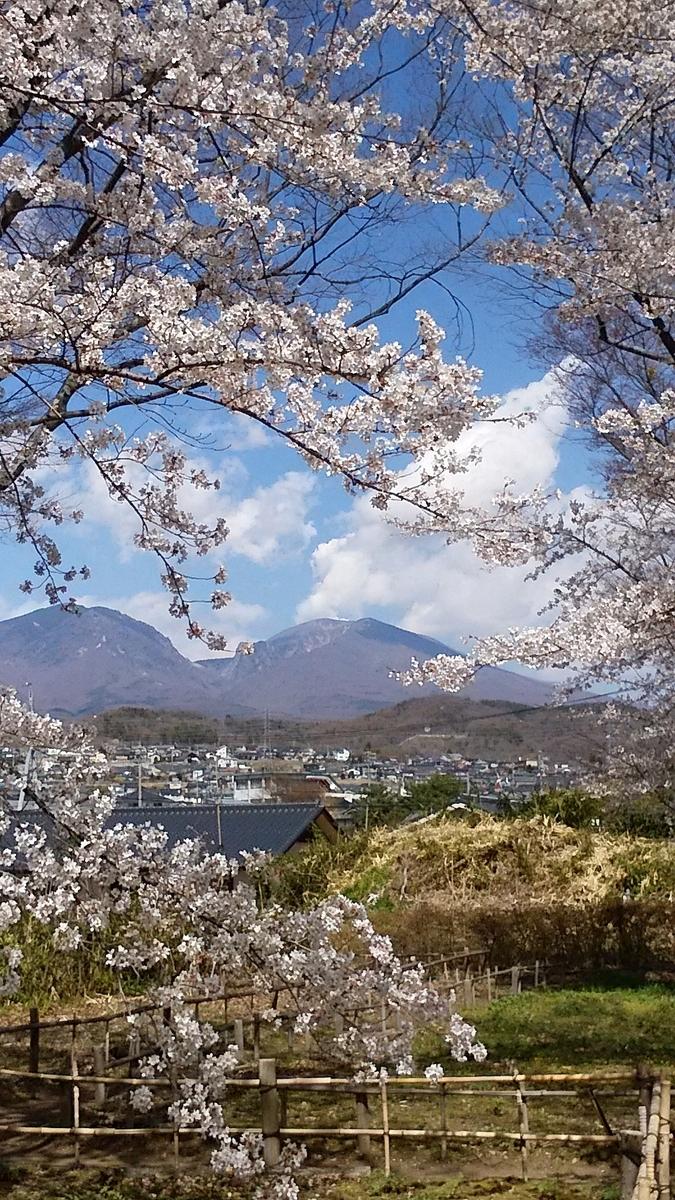f:id:satoyamanekokun:20210418144123j:plain