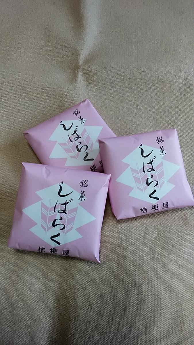 f:id:satoyamanekokun:20210504181646j:plain
