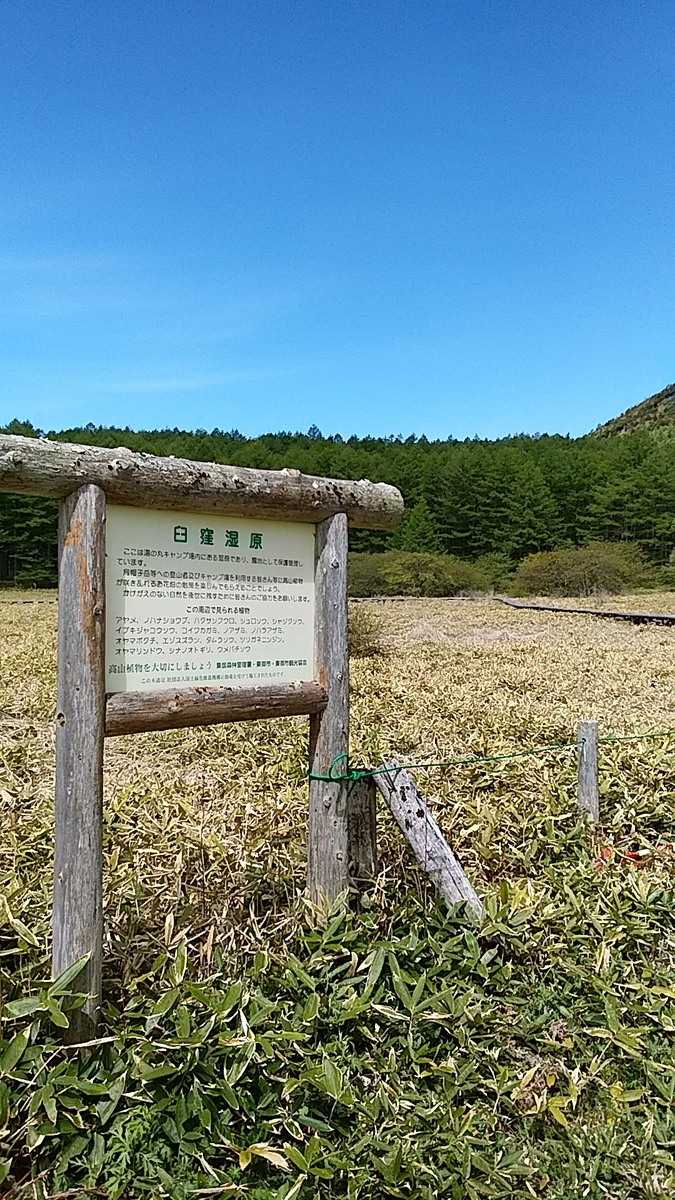 f:id:satoyamanekokun:20210607181954j:plain