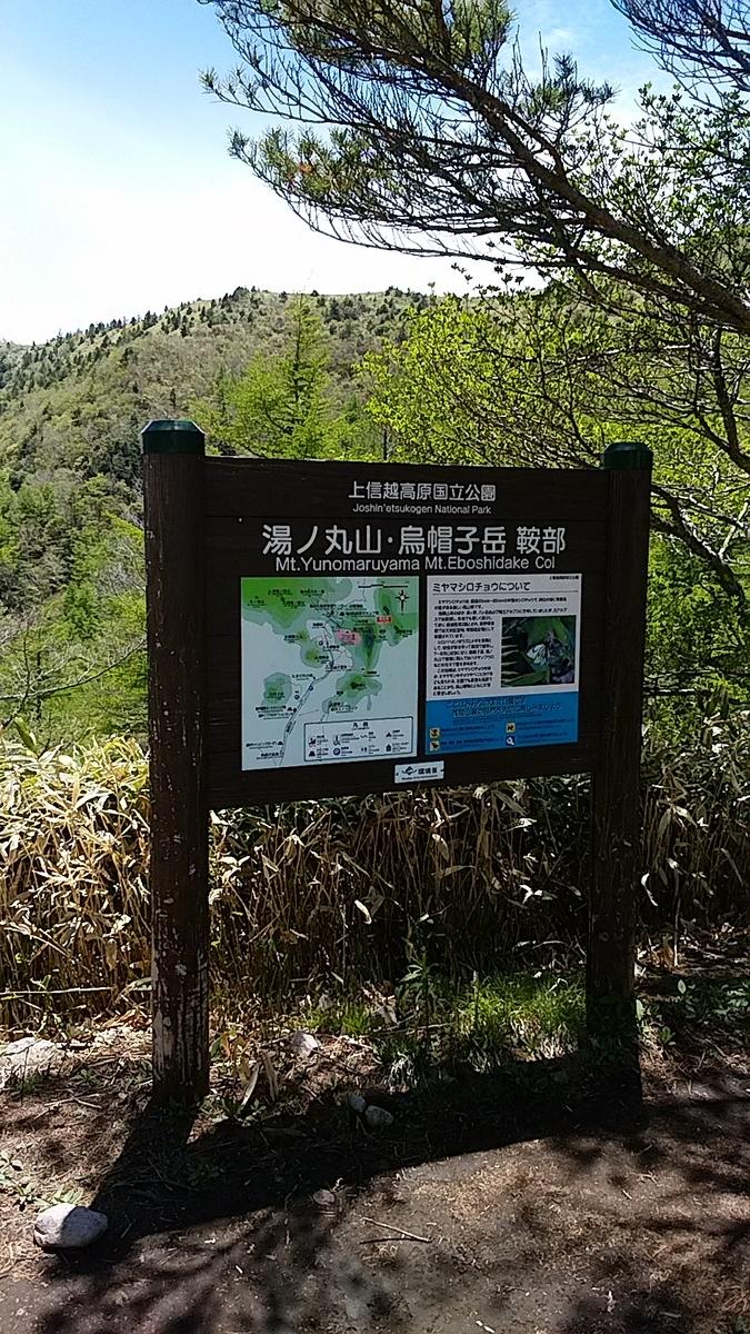 f:id:satoyamanekokun:20210608055426j:plain