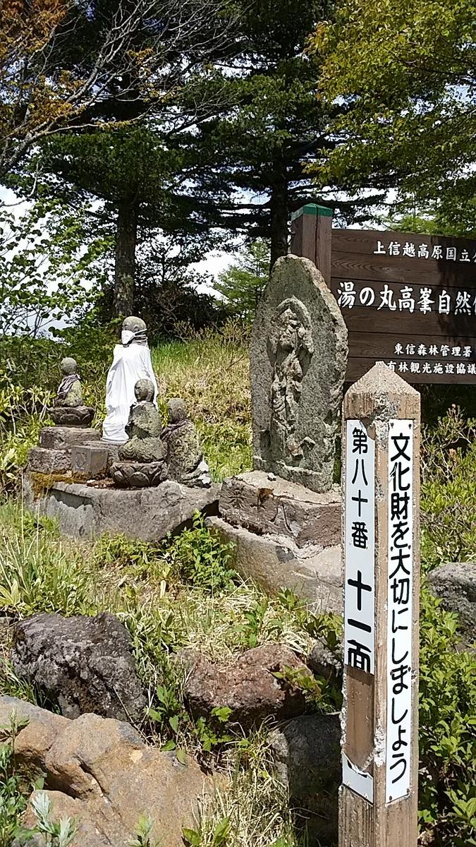 f:id:satoyamanekokun:20210608080253j:plain