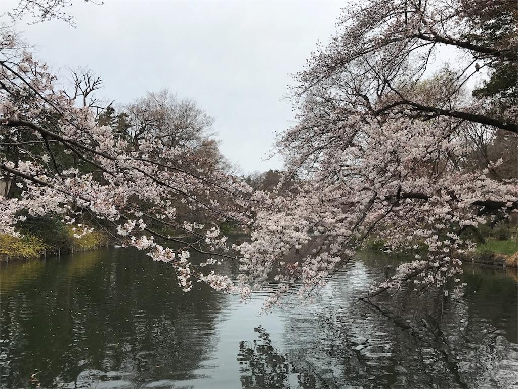 f:id:satsuka1:20170331090001j:image