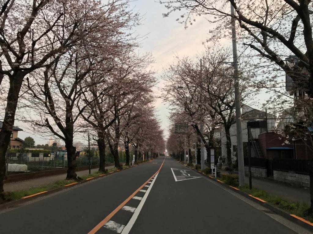 f:id:satsuka1:20170405081426j:plain