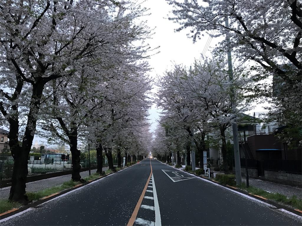 f:id:satsuka1:20170415163726j:image
