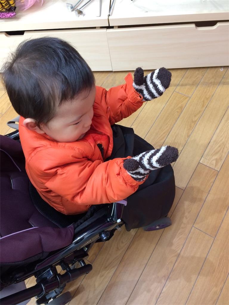 f:id:satsukisakura:20161023225925j:image