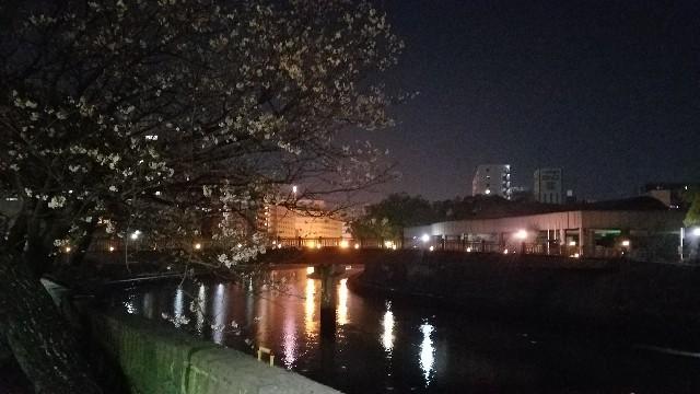 f:id:satsumakun:20210328234334j:image