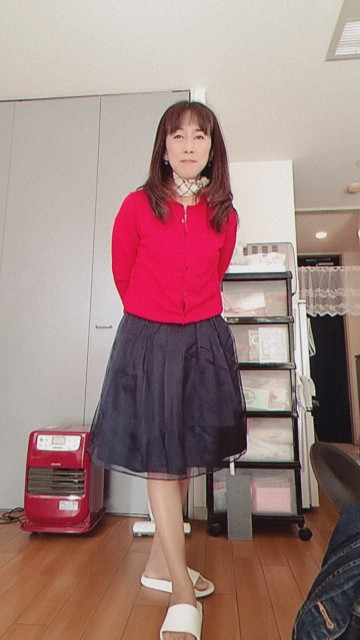 f:id:satsumakun:20210420181335j:image