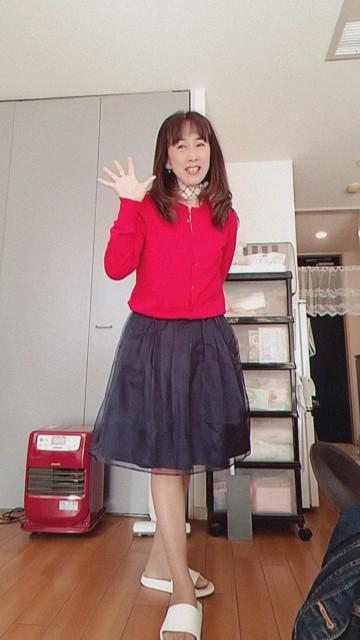 f:id:satsumakun:20210420181347j:image