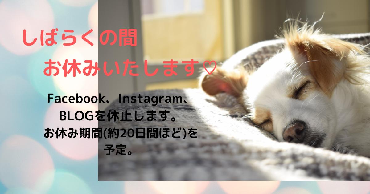 f:id:satsumakun:20210520004502p:plain