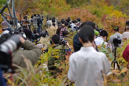 f:id:satsumannoyaji:20091024113423j:image