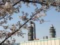 桜と水再生センター
