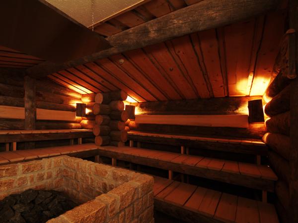 舞浜ユーラシアのサウナ室の画像