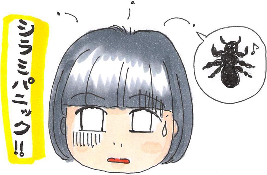 f:id:sawa-mori:20171107162552j:plain