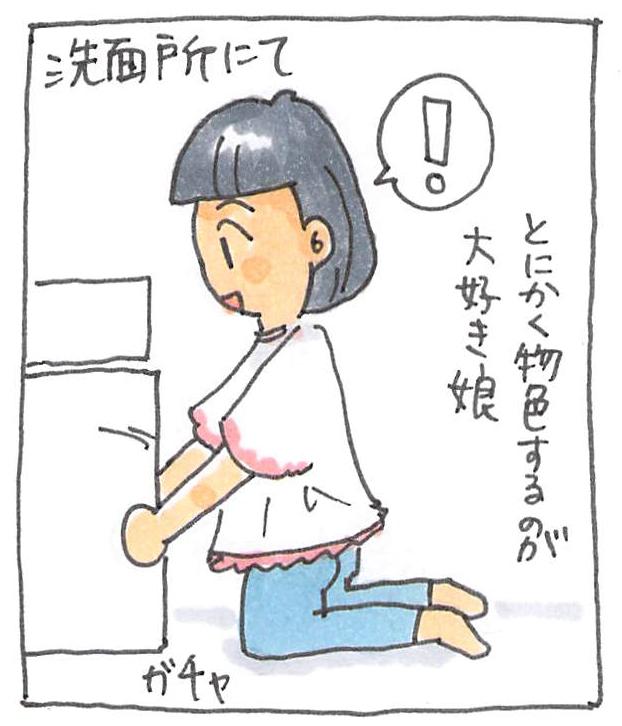 f:id:sawa-mori:20171111203633j:plain