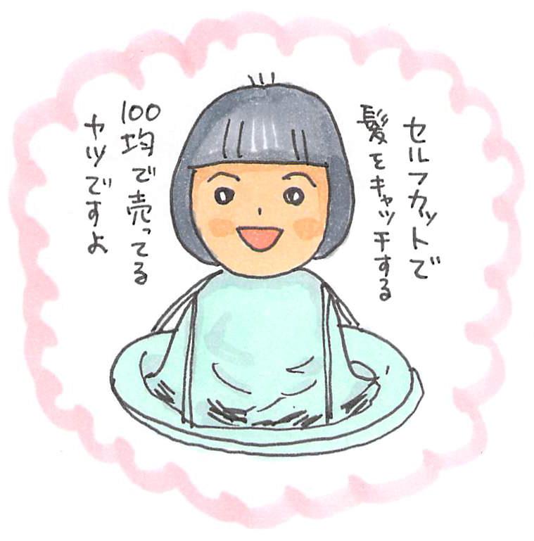 f:id:sawa-mori:20171111204800j:plain