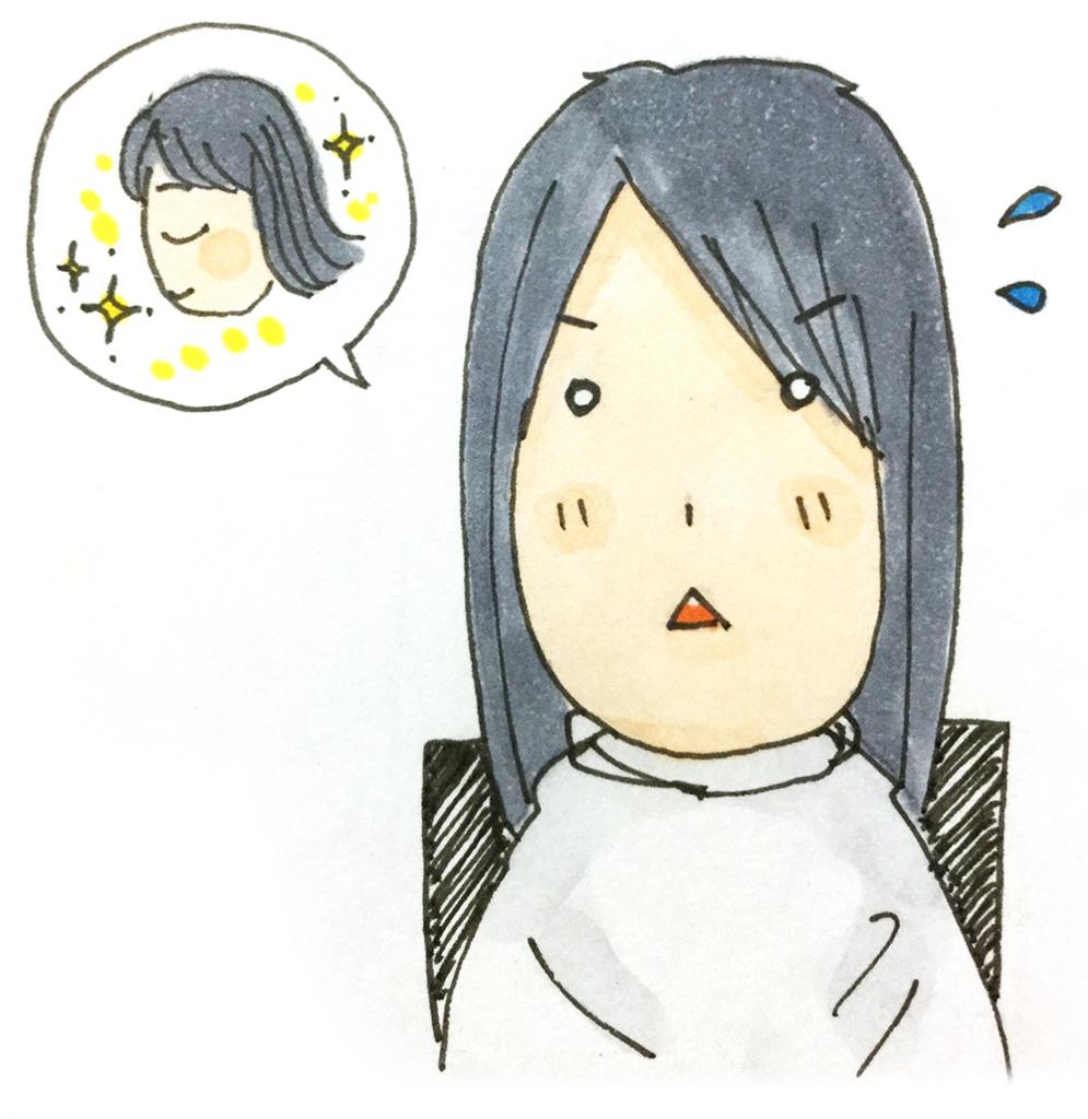 f:id:sawa-mori:20171125104750j:plain