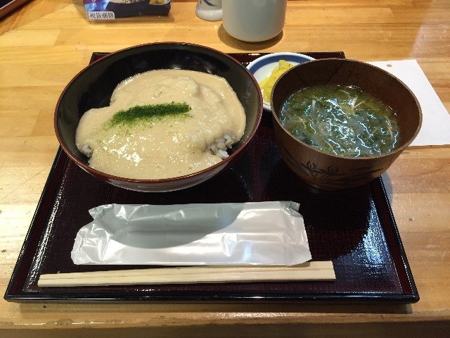 f:id:sawa_goto:20150623074509j:image