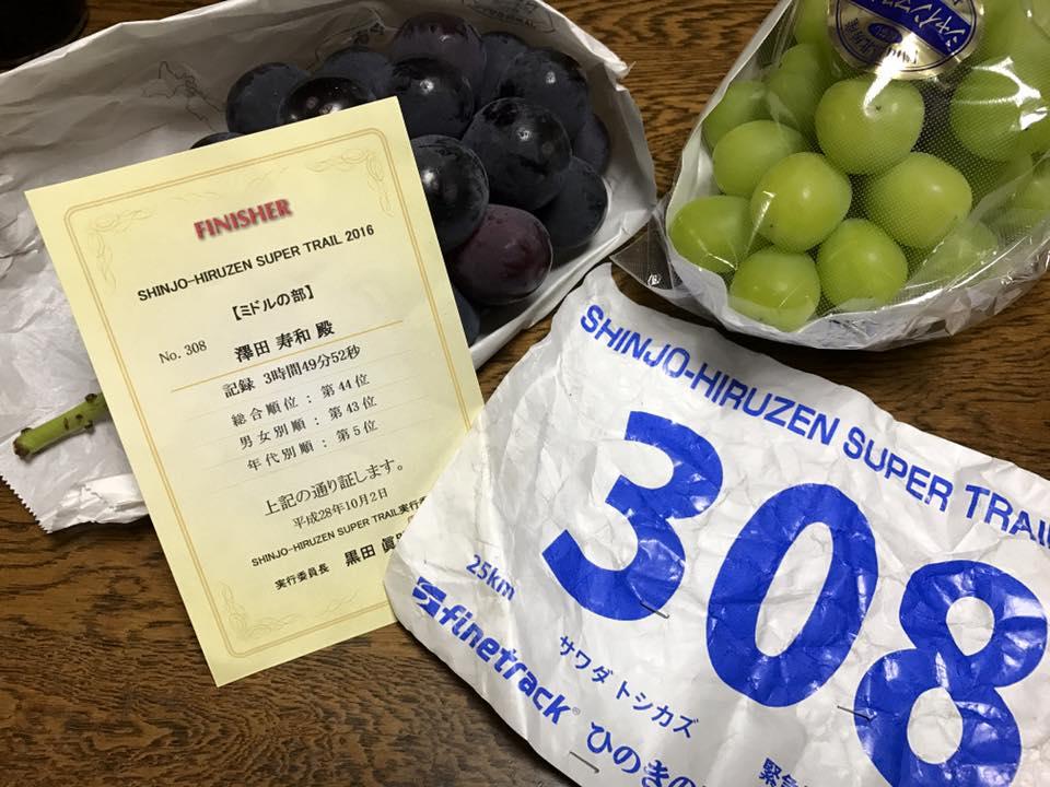 f:id:sawadake:20161005085435j:plain
