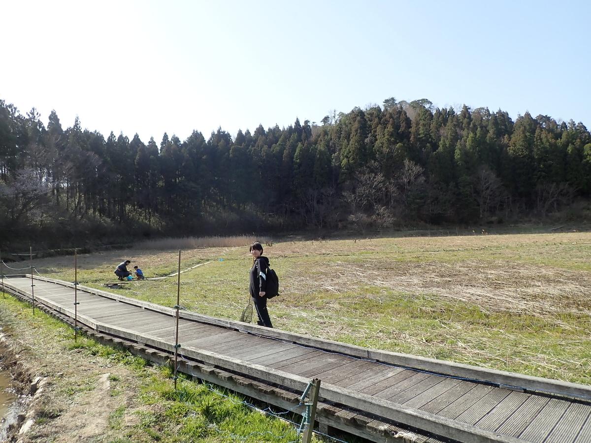 f:id:sawakaido:20200321223833j:plain